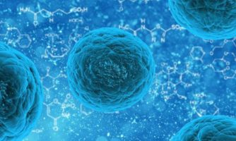 Key to unlock blocked differentiation in microRNA-deficient embryonic stem cells