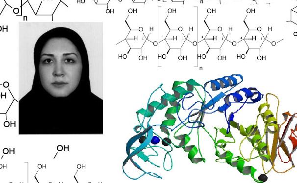 دستاورد دانشجوی ایرانی در تثبیت آنزیمهای صنعتی با فناوری نانو
