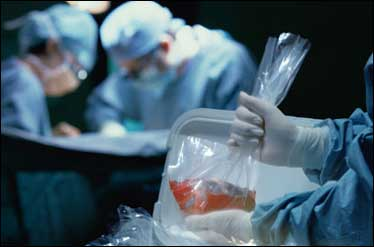 تلاش بلندپروازانه دانشمندان برای پیوند کل بدن انسان