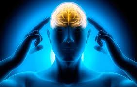 پیشرفتهترین آزمایشگاه نقشهبرداری مغز خاورمیانه