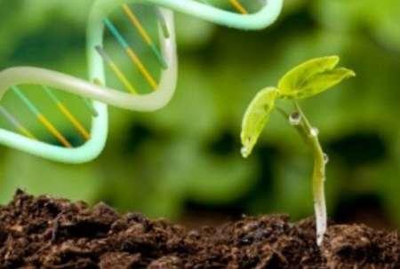نسخه نهایی اطلس ظرفیتهای علمی زیست فناوری تهیه شد