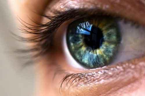 کمک به رشد سلولهای بنیادی چشم با داربست نانویی پژوهشگران کشور