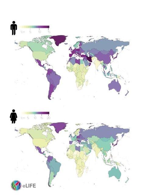 زنان ایرانی تا رتبه ۸۸ جهان قد کشیدند/کشورهای چاق از قد دنیا جا ماندند!