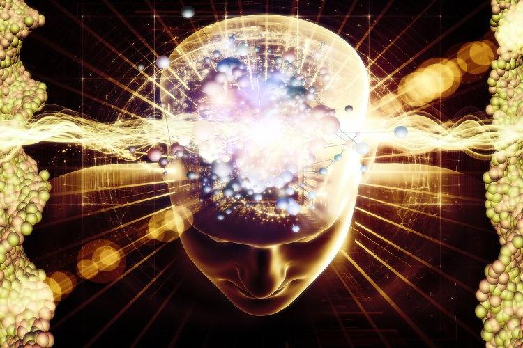 پایگاه نوار مغزی ایرانیها، هفتمین در دنیاست