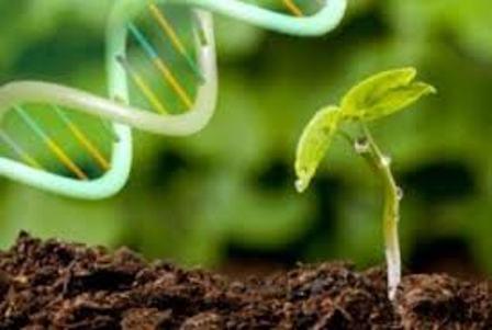سومین جشنواره دانشآموزی زیست فناوری برگزار میشود