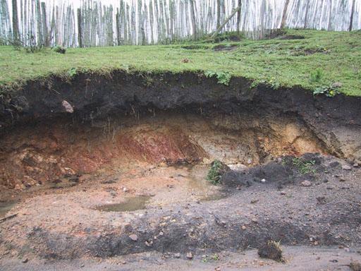 فاجعه پیش رو: وضعیت خاک، بحرانیتر از آب!/با فرسایش خاک ۴ برابر متوسط جهانی جزو پیشتازهای دنیا هستیم