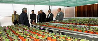 افتتاح نخستین گلخانه اسپانیایی در دانشگاه ارومیه