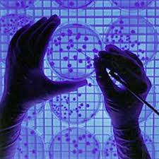 درمان سرطان با ژن درمانی توسط پژوهشگران دانشگاهی