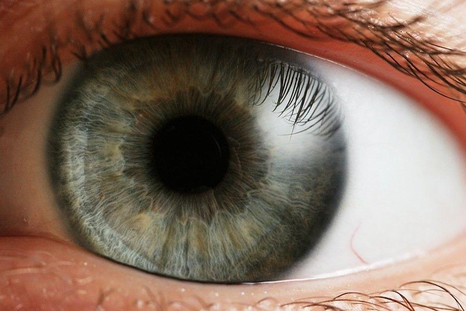 تولید داروی ضد قارچ کاهش التهاب قرنیه چشم