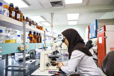 تصویب پشتیبانی از ۱۱۷ طرح در صندوق حمایت از پژوهشگران/حوزههای در رأس حمایت تا کنون