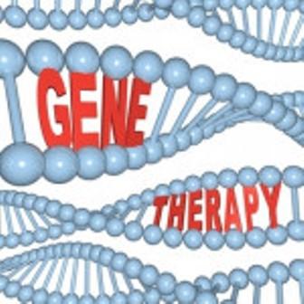 ساخت نانو حامل های انتقال ژن به سلول برای درمان سرطان توسط محققان دانشگاه علوم پزشکی شیراز