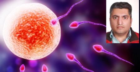 ارائه روش جدید بررسی اسپرمزایی و تشخیص ناباروری مردان توسط محققان «ابنسینا»