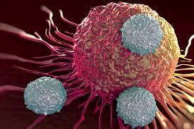 طراحی نانو حسگر سلولهای سرطان تخمدان توسط محققان ایرانی