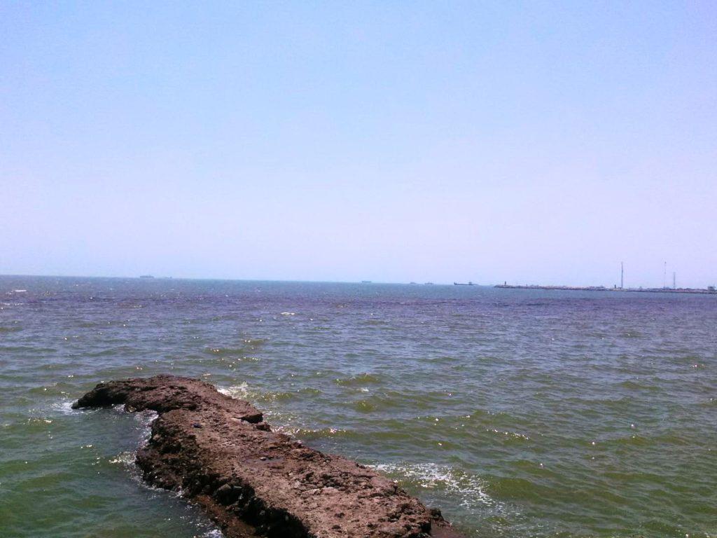 لکه ۲۴۰ هزار متر مربعی شکوفایی پلانکتونی در ساحل بندرعباس