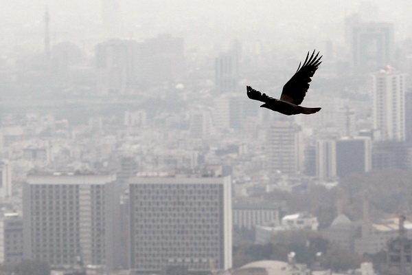 «آلودگی هوا و صدا» وارد ششمین همایش ملی میشود!