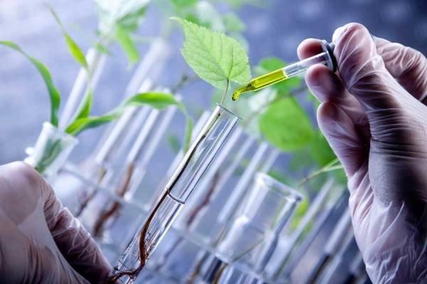 وزیر کار: زیست فناوری یکی از ۷ رشته کلیدی جهان است
