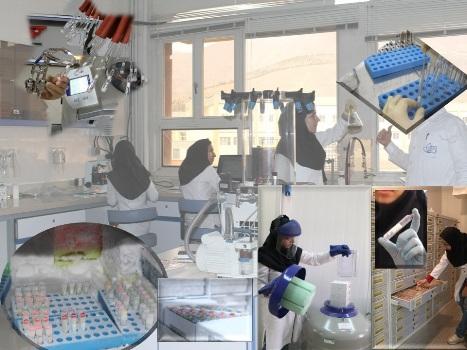 نخستین آزمایشگاه آموزشی دانشجویی فناوری نانو کشور راه اندازی شد