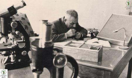 جایزه یادبود بنیان گذار دانش گیاه پزشکی و حشرهشناس بزرگ ایران اعطا شد