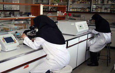 ادعای محققان دانشگاه تهران: گوشت دام ذبح شرعی، کیفیت و ترکیب بیوشیمیایی بهتری دارد