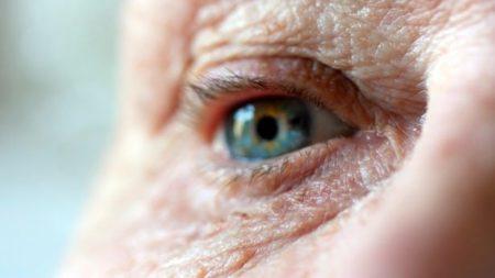 آزمایش موفق «کپسول گیاهی درمان آلزایمر » ساخت محققان کشور