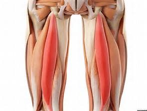 ساخت دستگاه تقویتکننده عضلات داخلی ران پا