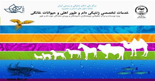 ارائه کیت ها و آزمون های ژنتیک جانوری توسط مرکز ملی ذخایر ژنتیکی و زیستی ایران