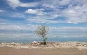 منبع اصلی ریزگردهای کشور در داخل  است/آب دریاچه ارومیه به ۳ درصد ظرفیت واقعی رسیده است!