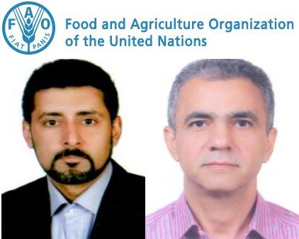 عضویت دو استاد ایرانی در کمیته مشورتی سازمان غذا و کشاورزی ملل متحد
