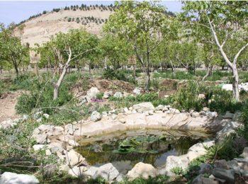 ساخت نخستین باغچه پایلوت پرماکالچر دانشگاهی کشور