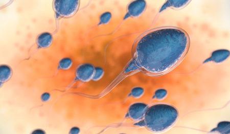 عوارض مرگبار یک حساسیت نادر: آلرژی به اسپرم از خارش و تهوع تا مرگ