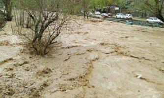 هشدار وقوع سیلاب و خسارت در حوضه رودک تهران /شبیهسازی هیدرودینامیکی سیلاب رودخانهای در مناطق شمال تهران