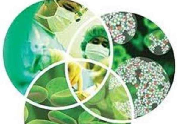 تصویب نهایی سند ملی زیست فناوری در ستاد راهبری نقشه جامع علمی