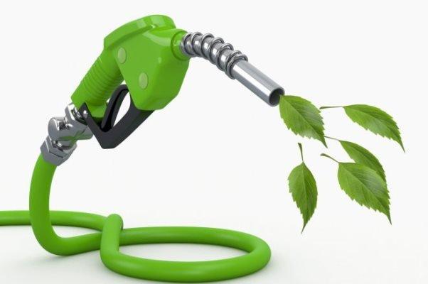 امکان سنجی تولید سوخت ترکیبی بیودیزل و گازوییل توسط محققان دانشگاهی