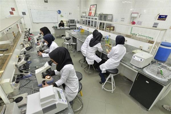 تصویب حمایت از ۲۴ طرح پژوهشی حوزه علوم و علوم زیستی از سوی صندوق حمایت از پژوهشگران