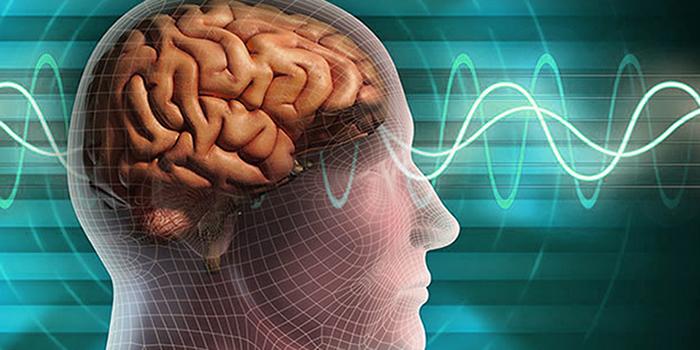 دستاورد جدید محققان دانشگاهی: پیش بینی حمله های صرعی از روی سیگنال های مغزی سطحی