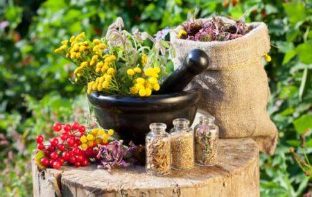 صدور بیش از دو هزار و ۶۰۰ مجوز تولید داروهای گیاهی