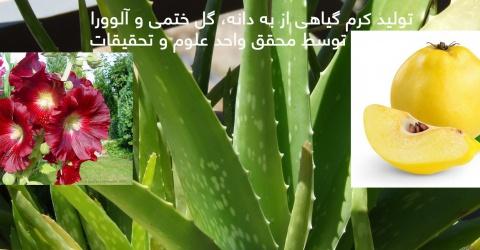 ساخت ماده اولیه گیاهی برای لوازم آرایشی و بهداشتی توسط محققان دانشگاهی