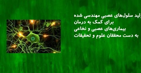 درمان بیماریهای عصبی و نخاعی با تولید سلولهای عصبی توسط محققان کشور