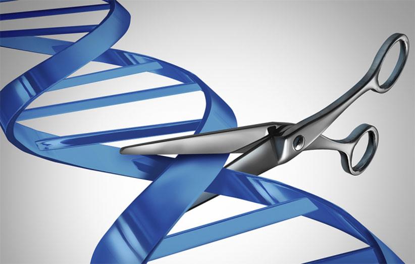 پژوهشگاه ملی مهندسی ژنتیک، میزبان دومین سمپوزیوم کریسپر