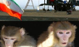 رییس پژوهشگاه هوافضا خبرداد:انتخاب نخستین فضانوردان ایرانی از بین خلبانان/هفت سال تاپرتاب نخستین فضاپیمای سرنشیندارایران/زوج میمونهای فضانورد و فرزندشان در رویان