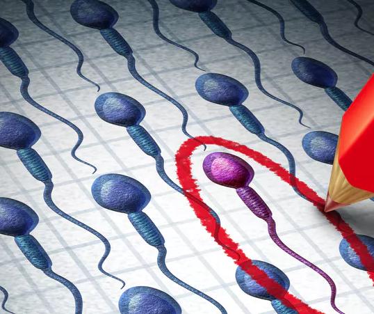 آسیب به DNA اسپرم چگونه به سقط جنین منجر می شود؟