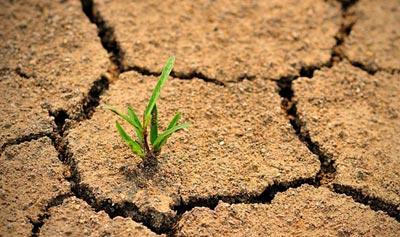 طرح توسعه شاخصهای خشکسالی کشاورزی اجرایی میشود