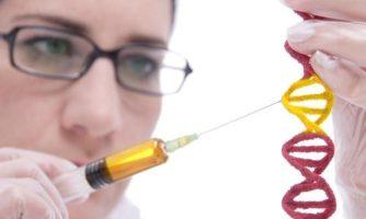 دبیر ستاد توسعه علوم و فناوری سلول های بنیادی خبر داد: پیگیری تدوین آیین نامههای ژن درمانی در ستاد