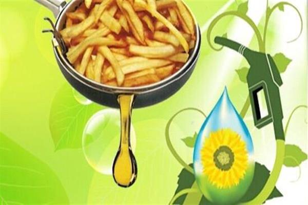راه اندازی پالایشگاه تولید گازوئیل زیستی از پسماند روغن های خوراکی در کشور