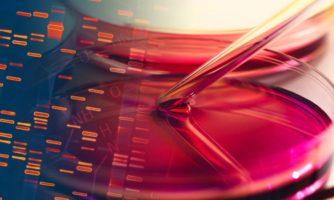ابداع روشی برای ترمیم ضایعات غضروفی بر پایه جوهرهای زیستی