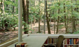 عوارض فروپاشی کتابخانههای عمومی برای جامعه همانند تاثیر نابودی جنگلها بر طبیعت است