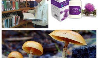 ساخت داروی درمان مسمومیت ناشی از قارچ سمی از گیاه خارمریم
